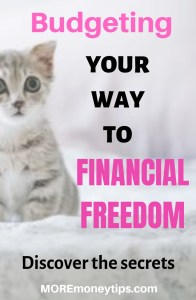 Budgeting your way to Financial Freedom. Discover the secrets.