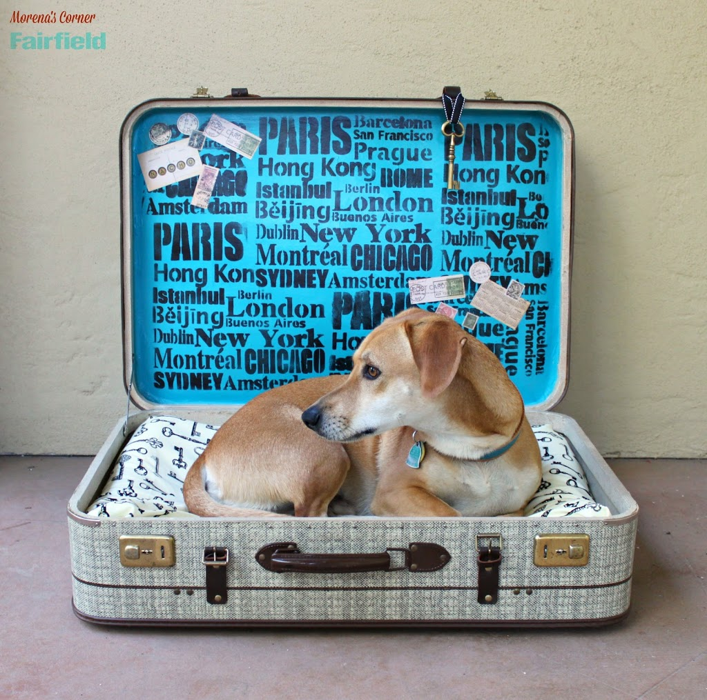 Repurpose A Suitcase Into A No Sew Pet Bed Morena S Corner