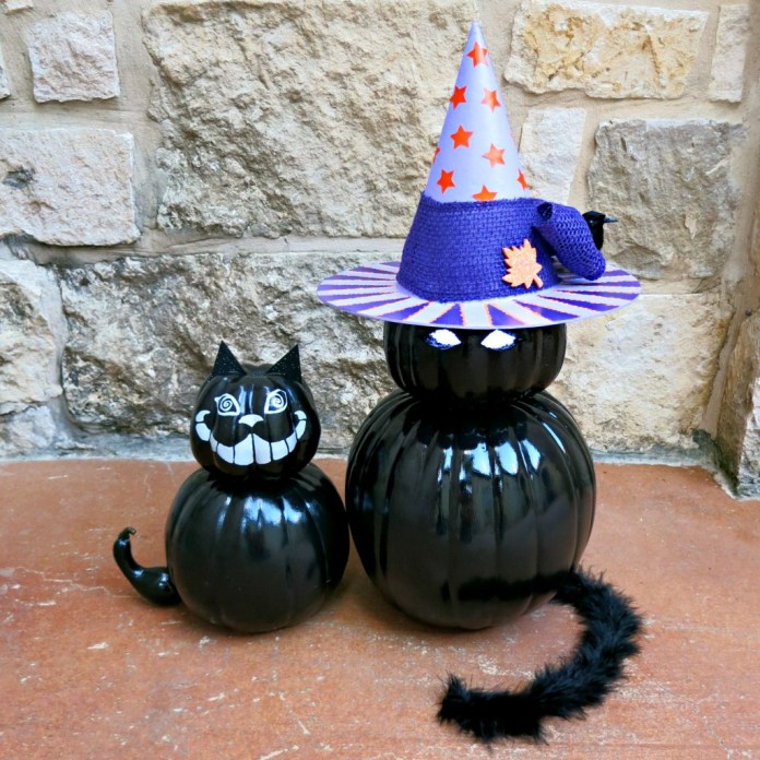 black pumpkin cat