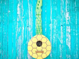 Pineapple Ukulele DIY