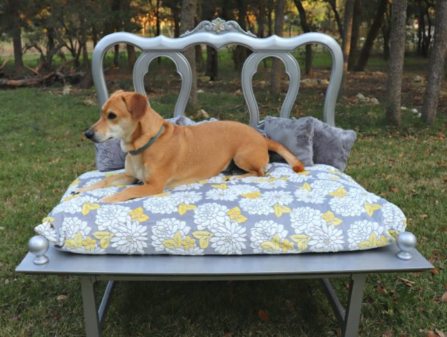 Elegant pet beds can get expensive, but you can make your own dog bed for a fraction of the cost!