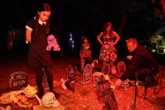 Halloween cemeteryy with flamingo vultures