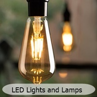 vintage edison led light