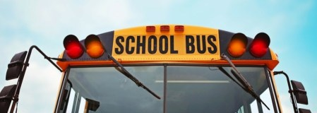 More_Organised_school_bus