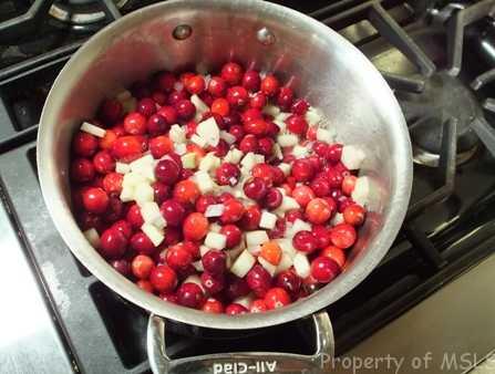 cranberries 064