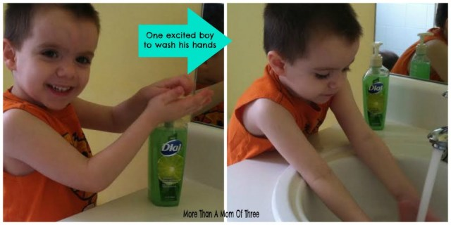 Dial Deep Cleansing Hand Soap collage