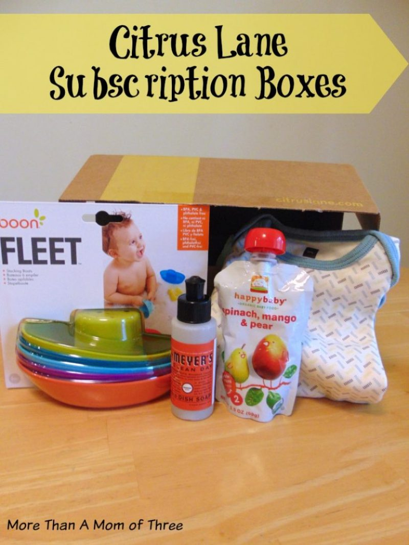 Citrus Lane subscription boxes