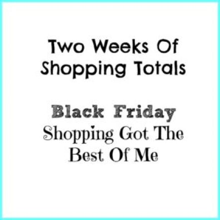 two weeks of shopping totals