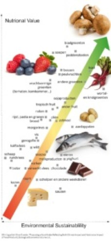 Environmental Sustainability versus nutritional Value graph