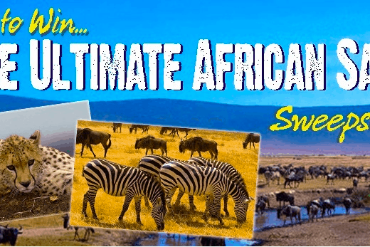 The Ultimate African Safari