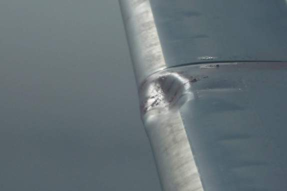 The right wing of Air Canada Flight 548 after the bird strike shows evidence of the impact.