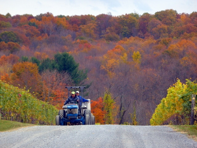The bountiful Hudson Valley
