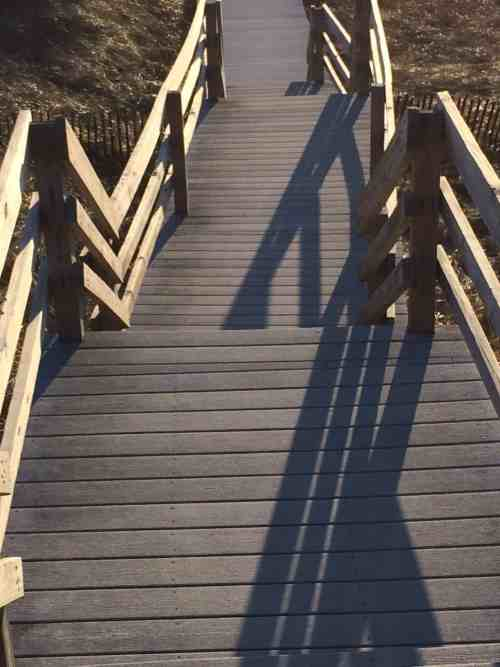 Plum Island Boardwalk (Credit: Liz Desmarais)