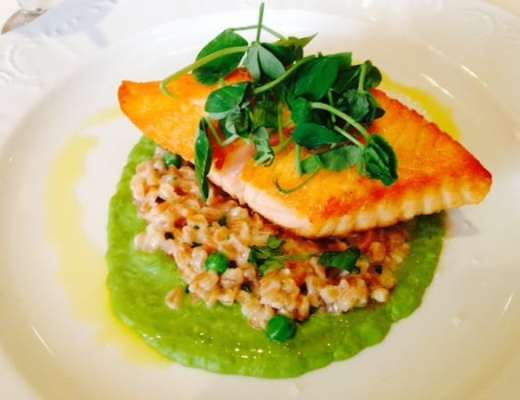 Grilled salmon on a bed of farro risotto