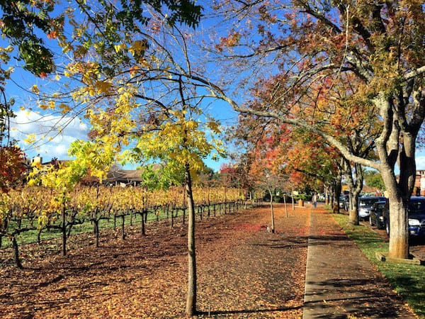 Downtown Yountville during Cabernet Season