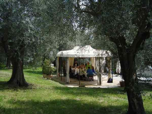 Tastings and lunch in Olive Grove (Credit: John and Sandra Nowlan)