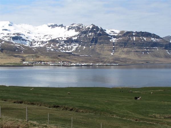 Pastoral view of Iceland
