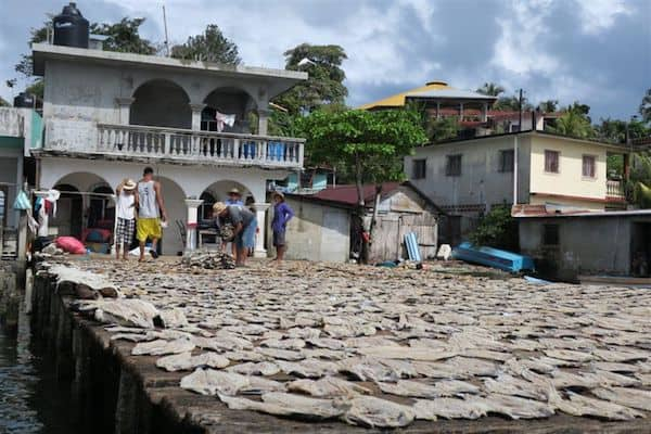 Drying fish in LIvingston