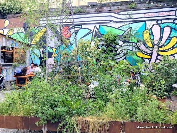 Plants & graffiti decor