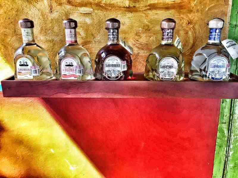 Flavorful beverages at La Vinata de Los Osuna
