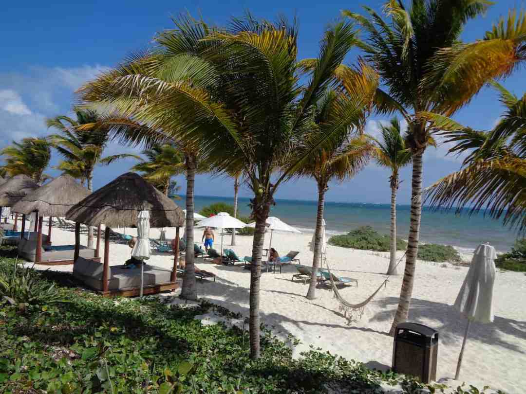 Under the shade of palm trees at the beach at Haven Riviera Cancun