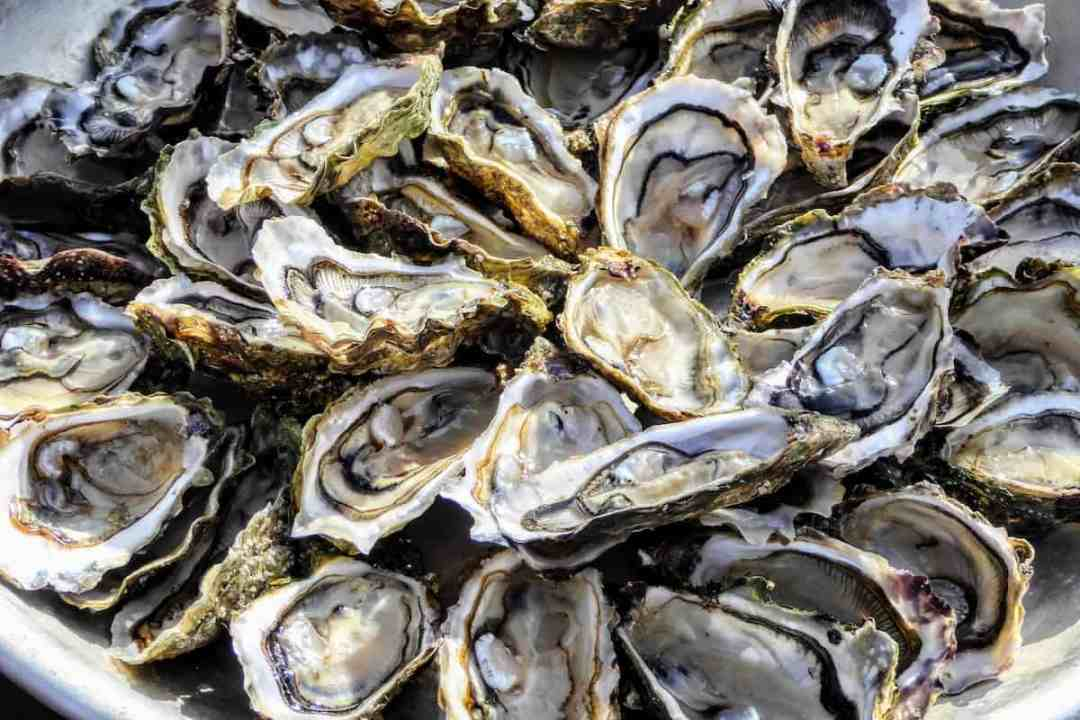 Oysters from Arachon Bay