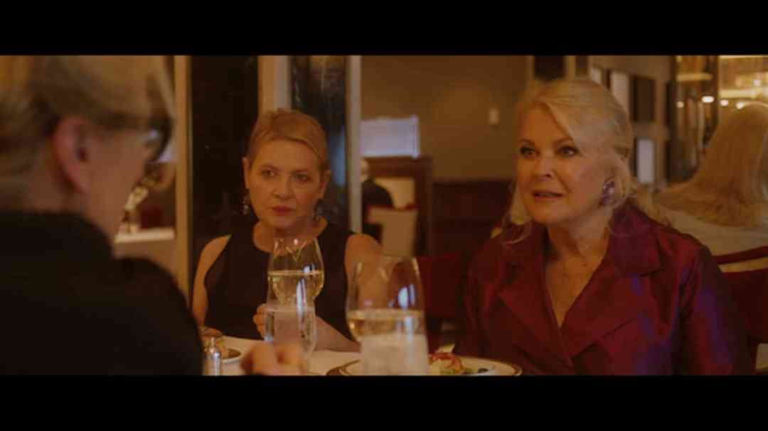 Let Them All Talk Review: The three friends at dinner