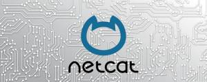 NetCAT security vulnerability
