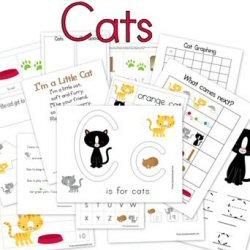 Cat worksheets