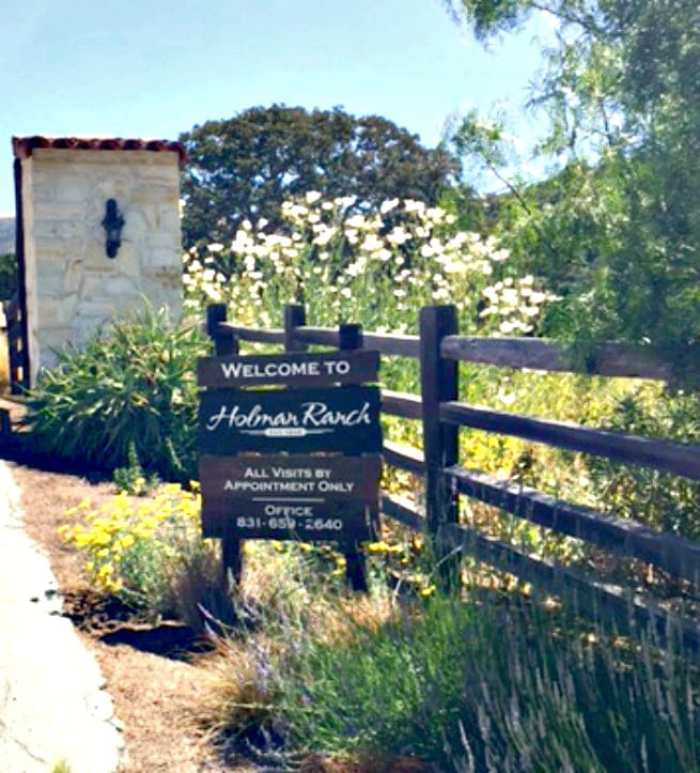 Are you looking for a unique wedding venue in Northern California? Holman Ranch is western elegance and sophistication in a unique setting.