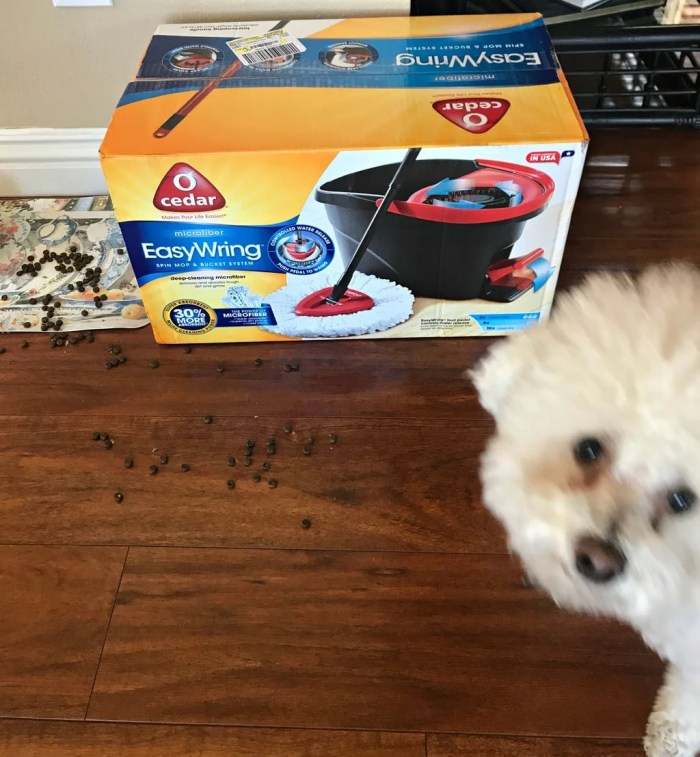 If you have been spending too much time cleaning your wood floor, see my tips:How to Easily Clean Your Hardwood Floors - Dog Owners Need This!