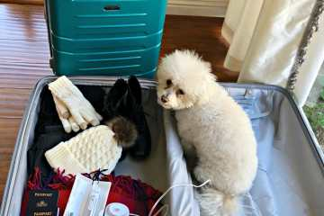 Packing Tips for First Time Cruisers – What are Your Must Take Items?