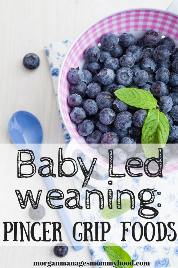 Baby led weaning can help teach your child more than just how to eat - it can help hone their pincer grip as well! Keep reading to find a list of awesome baby led weaning pincer grip foods!