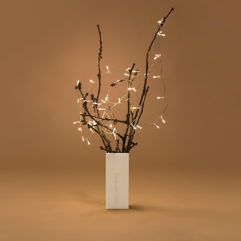 Schachtel unserer PLS als Vase verwendet