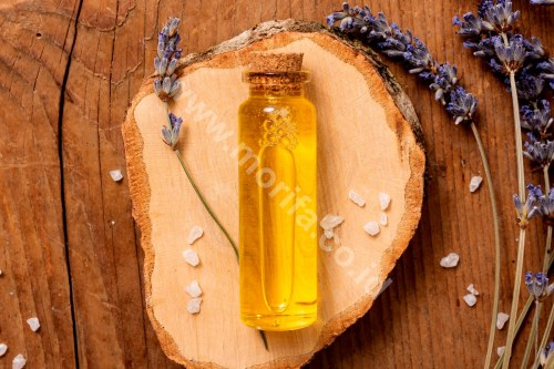 High-Quality Pure Organic Moringa Oil In the United States
