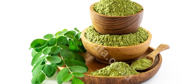 Variety Of Delicious Ways To Process Moringa Oleifera Powder