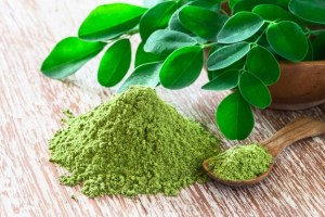 The Moringa Oil Bulk Products for Your Beauty