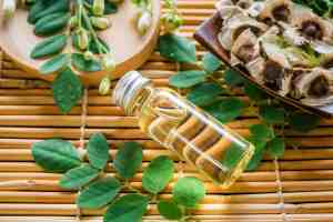 Moringa Oil Benefits for Cosmetics that You Should Know