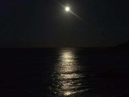 水平線に浮かぶ満月