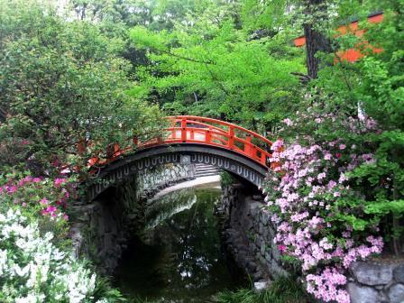 ツツジ京都下鴨神社