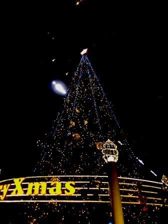 京都伊勢丹クリスマスツリー