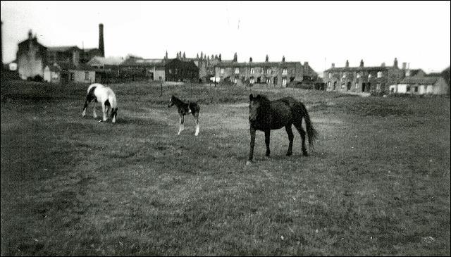 View of Moortop, Drighlington