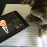 The Greatest Tweets, GIFS, and Posts from General Conference