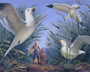 miracle-of-gulls-dowding-209677-gallery