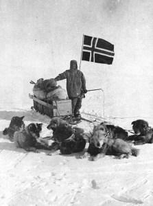 Amundsen-Polo_sud.-Con-cani