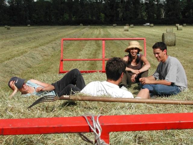 Tra sharing economy e tutela dell'ambiente, i network di turismo rurale crescono sul web