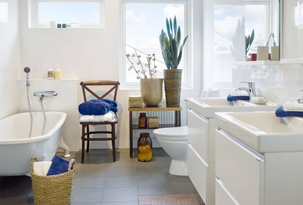 5 of the Best Bathroom Plants That Thrive in Humidity