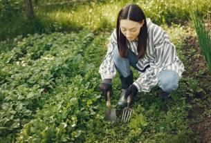 7 Amazing Health Benefits of Gardening