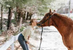 --THIS IS WHY YOUR HORSE NEEDS CBD MORE THAN YOU