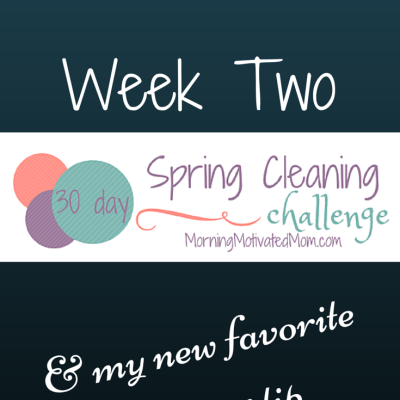 30 Day Spring Cleaning Challenge – Week 2